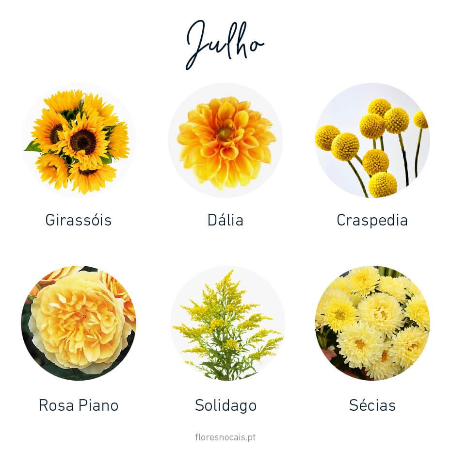 Flores do mês de Julho: Girassóis, Dálias, Craspédia, Rosa Piano, Solidago e Sécias.
