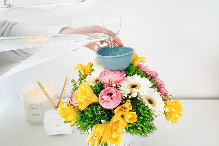 Caixa de flores naturais: como cuidar?